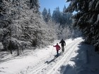 Do přírody s běžkami na Východní Moravě