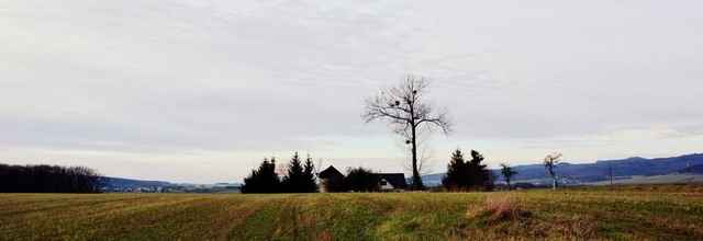 Větřák